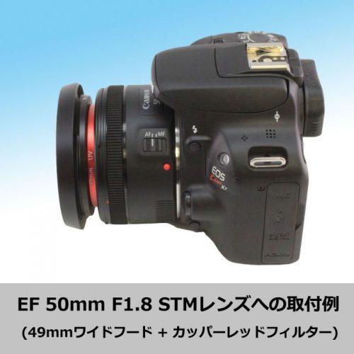 61E-dLbr3yL._SL1000__800