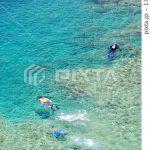 真栄田岬の画像がPIXTAで売れました!