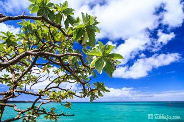 沖縄県 恩納村の海